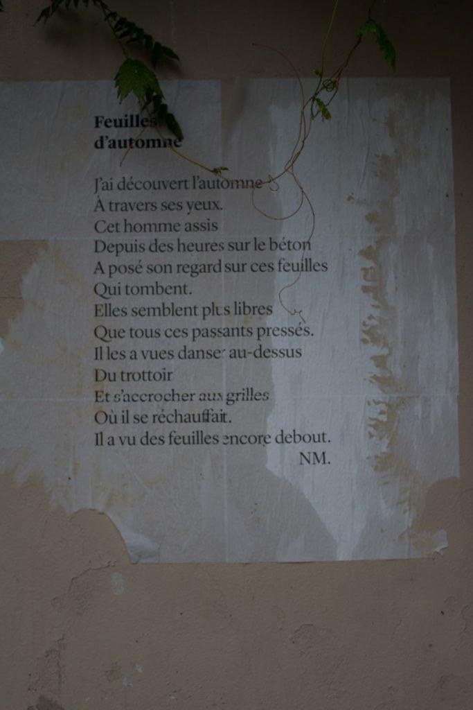 feuilles d'automne, nathalieman, poésie, paris, streetart