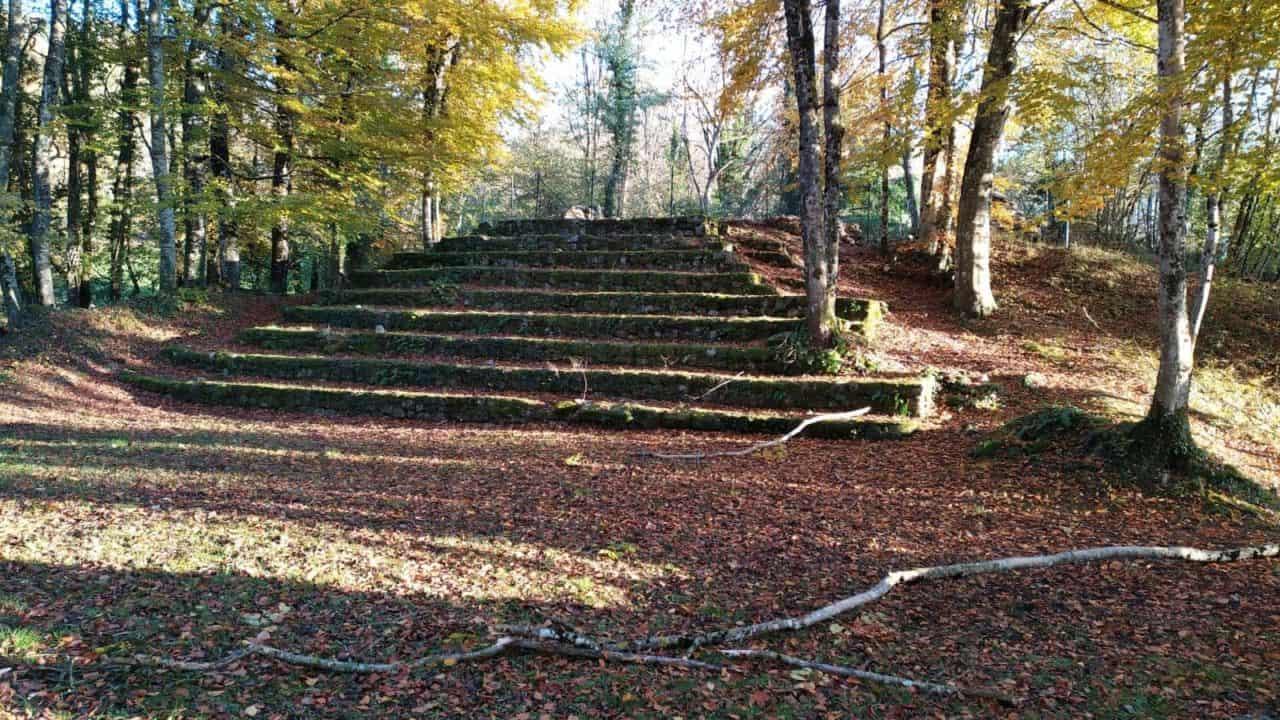 étourneaux sur cime d'arbre sans feuilles hiver bordelais nathalie man poésie